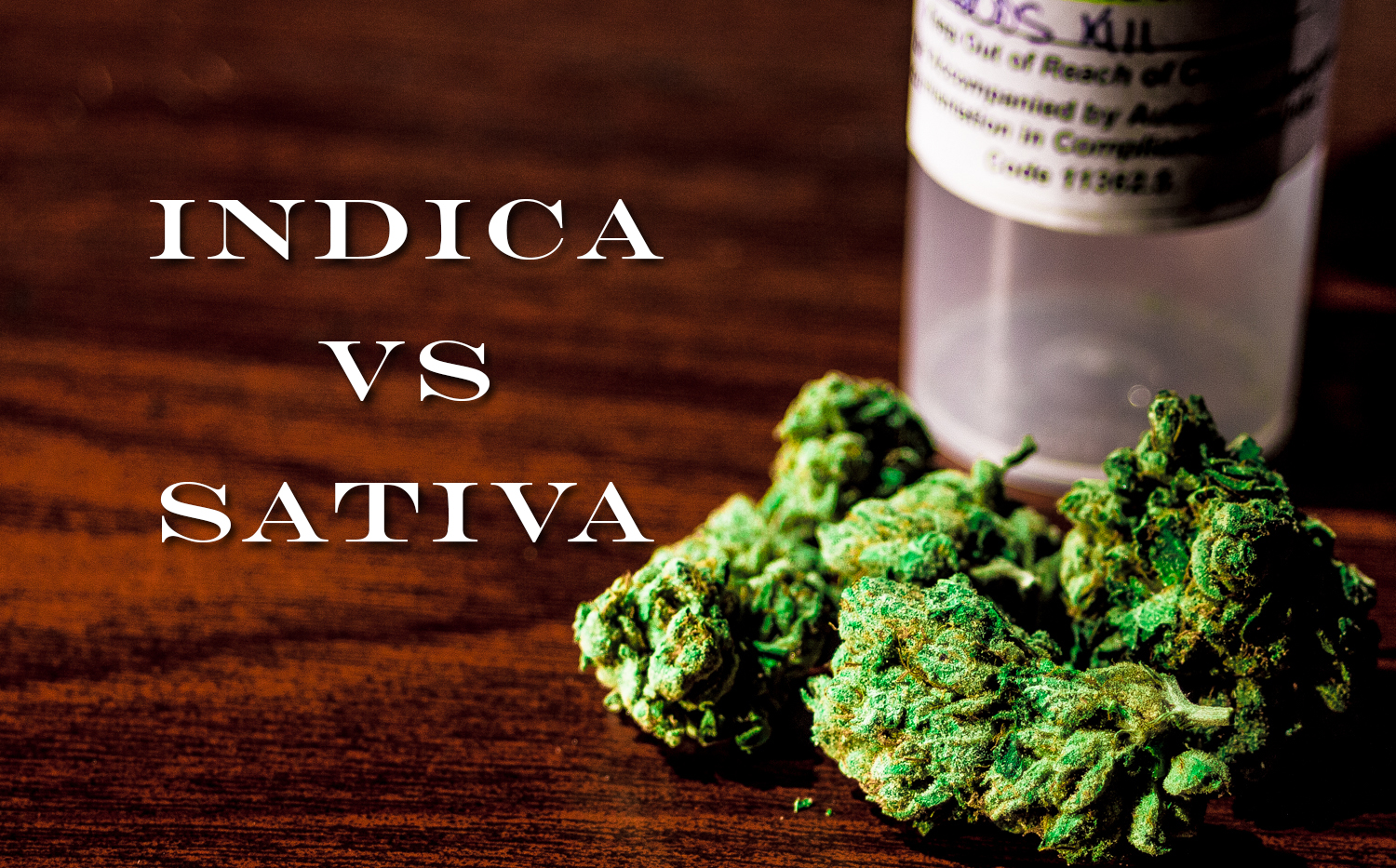 Sativa Vs Indica – What's the Best Marijuana For Me?