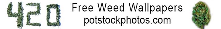 potstockphotos-white-banner