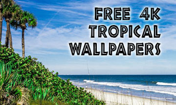 tropicwallpapers-square-ad