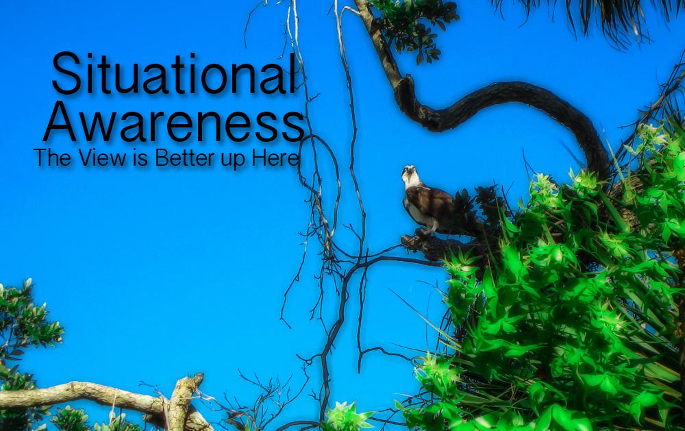 Situational Awareness -The Key to Success